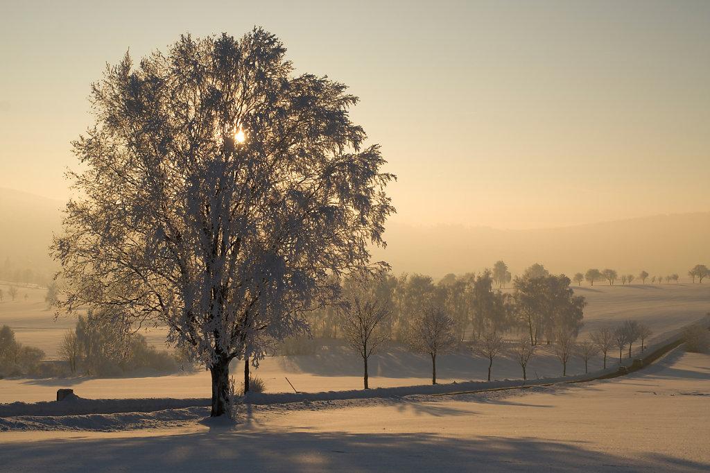 Winterlandschaft bei Leupoldsdorf