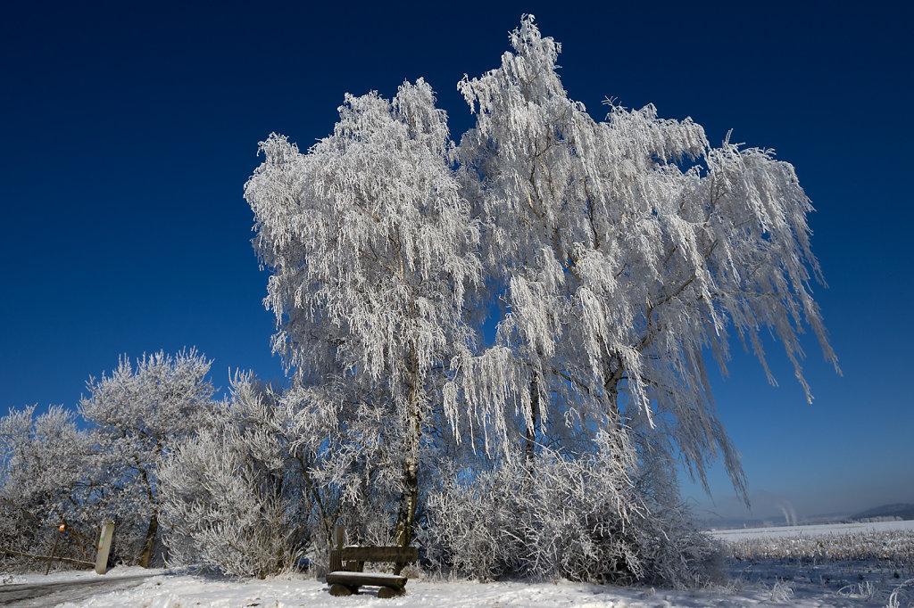 Eiskalter Wintertag